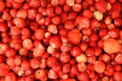 Sömlös textur av saftiga jordgubbar Arkivfoton