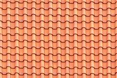 Sömlös textur av singlar Arkivbilder