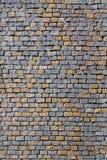Sömlös textur av trottoaren Fotografering för Bildbyråer