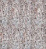 Sömlös textur för trädskäll Arkivfoto