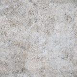 Sömlös textur för vitt cement Royaltyfria Foton