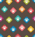 Sömlös textur med färgrika spår av katter, hundkapplöpning fotspår Arkivfoton