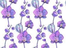 Sömlös textur med orkidér målade markörer Royaltyfri Illustrationer