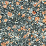 Sömlös textur - yttersida av den naturliga stenen med röda fläckar Arkivbilder