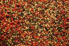 Sömlös texturbakgrund av kryddor, mång--färgad textur royaltyfria foton
