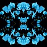 Sömlös texturmodell med blåa orkidér Arkivfoto