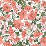 Sömlös tropisk blomma Tropisk plumeria, hibiskus och palmblad Tygprovkarta med paradisblommor som över isoleras royaltyfri illustrationer