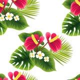 Sömlös tropisk prydnad Härliga blommor och gräsplansidor vektor illustrationer