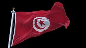 sömlös Tunisien flagga för 4k som vinkar i vind Inklusive alfabetisk kanal lager videofilmer