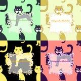 Sömlös uppsättning av katter för illustration för vektor för hälsningkort Royaltyfri Fotografi