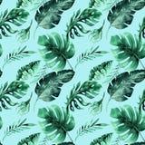 Sömlös vattenfärgmodell av tropiska sidor, tät djungel Mummel Royaltyfria Bilder