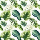 Sömlös vattenfärgmodell av tropiska sidor, tät djungel Mummel stock illustrationer