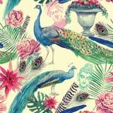 Sömlös vattenfärgmodell med påfåglar tecknad handvektor Arkivbilder