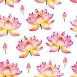 Sömlös vattenfärgprydnad med lotusblommablommor Royaltyfri Bild