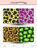 Sömlös vektormodell av geparden och jaguar för bakgrunder och sjalar Arkivbilder