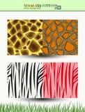 Sömlös vektormodell av giraffet och sebran för bakgrunder och sjalar Royaltyfri Foto