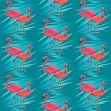 Sömlös vektormodell, baner med flamingo, exotisk blommadesign för tropiska sidor royaltyfri illustrationer