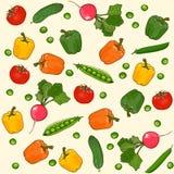 Sömlös vektormodell för grönsaker Arkivbild