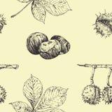 Sömlös vektormodell för höst med kastanjsidor och muttrar Säsongsbetonad dekor för tappningnedgång illustratören för illustration stock illustrationer