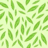 Sömlös vektormodell med gröna teblad vektor illustrationer