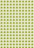 Sömlösa bakgrundssidor av gröna bladdruvor. Fotografering för Bildbyråer