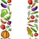 Sömlösa gränser av grönsaker vektor illustrationer