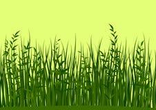 Sömlösa gräs och sidor Royaltyfria Foton