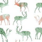 Sömlösa hjortar för modellillustrationvattenfärg vektor illustrationer