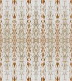 Sömlösa modellbruntgrå färger Arkivbild