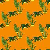 Sömlösa retro kaktusväxter för den hem- illustrationbakgrunden Arkivbilder