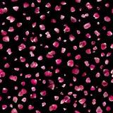 Sömlösa rosa Rose Petals på svart Arkivfoto