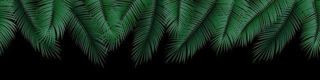 Sömlösa sommarpalmblad för vektor på svart bakgrund vektor illustrationer