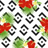 Sömlösa tropiska sidor och blommor - gömma i handflatan, monsteraen, hibiskusen och plumeria mot bakgrunden av geometriskt Fotografering för Bildbyråer
