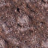 Sömlöst blöta sand med spår Bakgrund texturerar Royaltyfri Bild