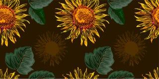 Sömlöst diagram, solblomma med gräsplansidor på brun bakgrund, vektorillustration Royaltyfri Fotografi