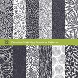 Sömlöst för lägenhet 12 för vektor svarta vita naturliga fastställt Arkivbilder