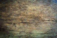 Sömlöst trätexturbråte som ätas av skällskalbaggar royaltyfri foto