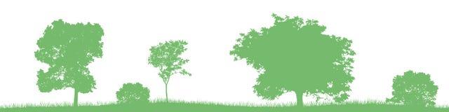 Sömlöst vektorlandskap med gröna lövfällande träd och buskar Royaltyfria Bilder