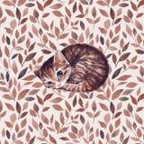 Sömnig katt vattenfärg Royaltyfri Foto