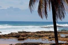 söndag morgon i den Itapuan stranden Arkivbilder