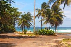 söndag morgon i den Itapuan stranden Royaltyfria Bilder