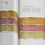 Sönderriven infographicsapelsin Arkivbilder