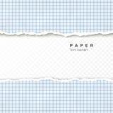 Sönderriven kant av kvadrerat papper Sönderrivet stycke av kvadrerat papper från anteckningsboken Tom sida som isoleras på genoms royaltyfri illustrationer