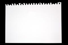 Sönderrivet ark av papper från teckningsboken Arkivfoton