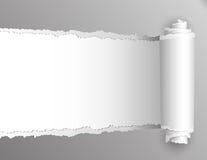 Sönderrivet papper med bakgrund för öppningsvisningvit. stock illustrationer