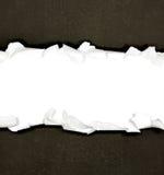Sönderrivna pappersgränser på vit Royaltyfria Bilder