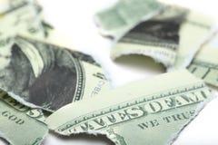 Sönderrivna stycken av dollaren Royaltyfri Foto