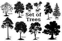 Sörja den svarta konturn för trädet royaltyfri illustrationer