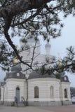 Sörja filialen med mörkt - gröna visare stänger den kyrkliga byggnaden från över Kupoler av den ortodoxa Foros kyrkan täckas med  fotografering för bildbyråer