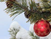 Sörja filialer, den Cristmas prydnaden, snö Arkivfoto